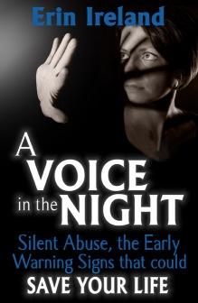 voiceinnight