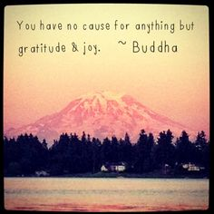 buddhagratitude