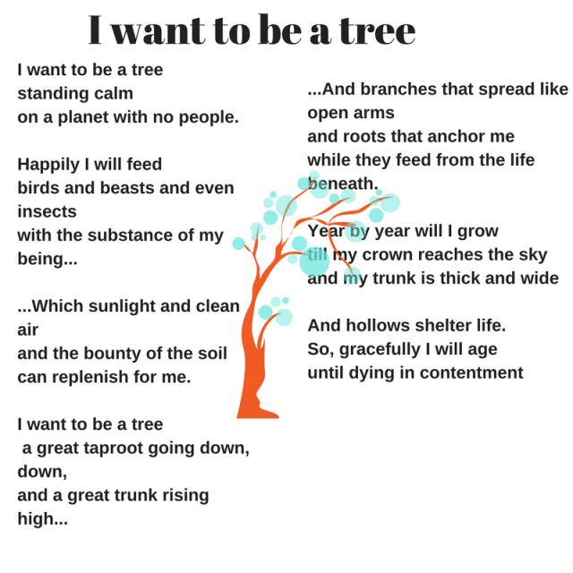 1p-tree