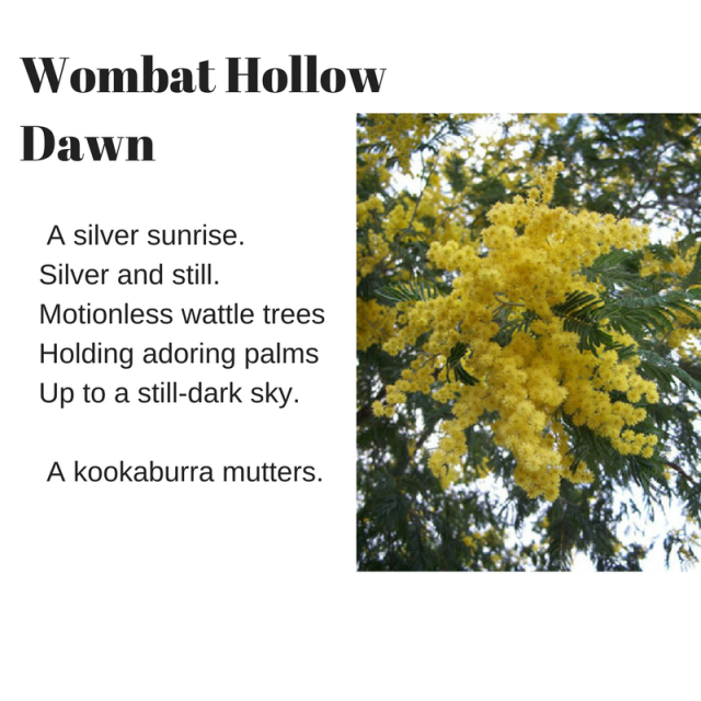 1p-Wombat Hollow Dawn